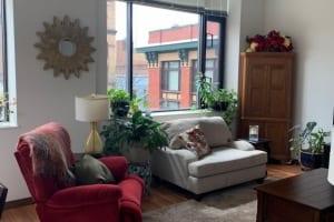 1_Living-Room